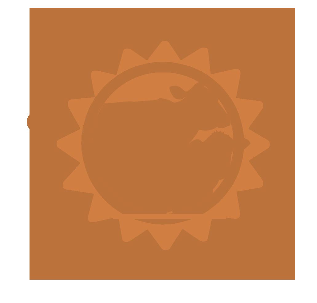 SW Nutrition_Bronze